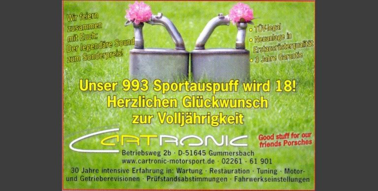 Sportendschalldämpfer 993